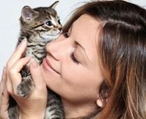 Ôm ấp mèo có thể gây chết người
