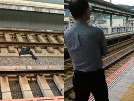 Nhật Bản: Bị hành khách phàn nàn vì tàu tới muộn, nhân viên sân ga nhảy xuống đường ray tự tử