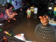 """Mưa lịch sử ở Sài Gòn: Ở truồng, ăn mì gói trên """"ốc đảo"""""""