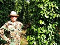 Cơ ngơi bạc tỷ của nông dân U60
