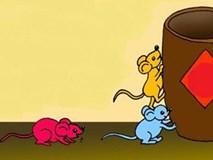 """Câu chuyện về 3 con chuột và """"bài học giá ngàn vàng"""" cho chúng ta"""