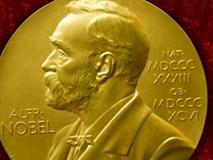 10 tác phẩm Nobel Văn chương được dịch sang tiếng Việt