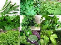 Những loại rau củ chị em nên trồng để vẫn đủ rau ăn cho mùa đông lạnh giá