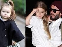 Ngày nào còn bé tí, Harper Beckham giờ đã 5 tuổi và ngày càng xinh xắn