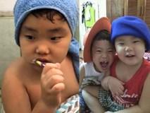 Bà xã Xuân Bắc chia sẻ clip Bi Béo khiến người hâm mộ phì cười