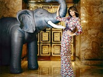 Melania Trump: Từ người mẫu khỏa thân thành bà chủ Nhà Trắng
