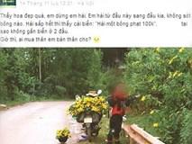 Nam phượt thủ khoe ảnh hái hết hoa dã quỳ trên đường bị dân mạng lên án gay gắt