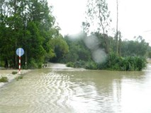 Quảng Nam: Mẹ chở con qua cầu nước lũ cuốn con chết