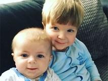 Người mẹ gần như phát điên khi con trai 4 tháng tuổi bị chó dữ lao vào cắn xé đến chết