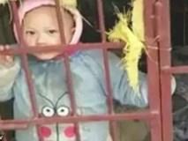 Ham mê trò đỏ đen, mẹ nhốt con vào chuồng chó để tránh bị làm phiền