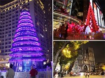 """Ngắm những cây thông Noel """"khổng lồ"""" tại Hà Nội"""