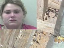 Bé gái 3 tuổi bị cha mẹ nhốt trong chiếc thùng gỗ chứa đầy côn trùng