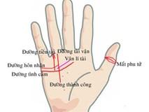Bàn tay của người phải kết hôn muộn mới có cuộc sống hạnh phúc an nhàn