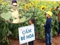 Bức xúc với hình ảnh phản cảm của giới trẻ tại lễ hội hoa hướng dương