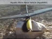 Máy bay không người lái lặn như chim ó biển và nhảy vọt như cá chuồn