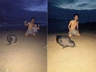 Clip chú hải cẩu lên bờ đùa giỡn với người dân trước khi bị đánh chết