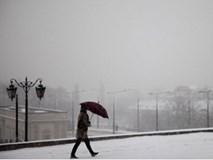 53 người chết vì giá rét tại Ba Lan