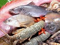 Cách giữ hải sản biển tươi ngon đến 3 ngày không cần tủ lạnh