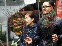 Người Hà Nội náo nức đi chợ hoa cổ nhất Hà Thành để mua sắm và chơi Tết