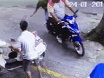 Thanh niên trộm chó táo tợn, ngay trước mắt chủ nhân