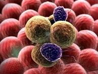 Người bị ung thư ngày càng tăng, 8 chuyên gia tiết lộ bí quyết riêng để phòng tránh bệnh