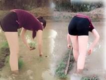 Ra đồng mò cua, thiếu nữ khiến cư dân mạng phải giật bắn người khi thấy điểm bất thường