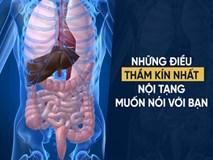5 thứ làm hại tim, phổi, thận, gan, mật nhiều nhất: Có thể bạn vẫn vô tình ăn hàng ngày