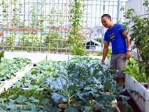 """Valentine, """"ông bố của năm"""" biến sân thượng thành vườn rau tặng vợ"""