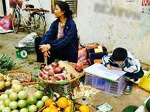 Bức ảnh con trai cặm cụi viết bài bên hàng trái cây mưu sinh của mẹ khiến dân mạng dậy sóng