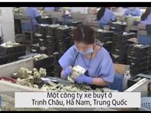 Nữ nhân viên đếm tiền nhanh như máy