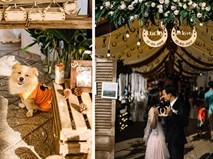 Chuyện tình cặp đôi yêu một thập kỷ đem gỗ, rơm, lá vào ảnh tiệc cưới