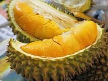 10 loại cây ăn quả giúp nông dân thu tiền tỷ ngon ơ