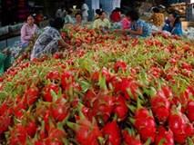 Ấn Độ bỏ lệnh cấm nhập khẩu 6 mặt hàng nông sản của Việt Nam