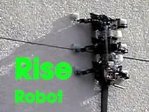 Robot leo tường, trèo cây hình dáng như con bọ