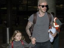 Harper nắm chặt tay bố khi xuất hiện ở sân bay cùng 3 anh trai