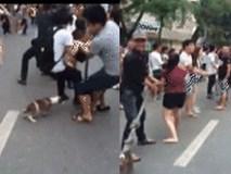 Chú chó hăng hái 'chơi' kéo co trên phố đi bộ khiến nhiều người bật cười