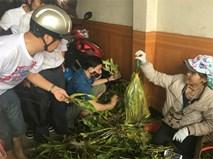 Chợ phiên lan rừng bán theo cân giữa Đà Nẵng