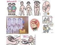 """Rúng động học sinh lớp 7 sinh con và chuyện Nhật Bản dạy quy trình """"tạo ra em bé"""""""