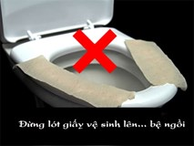 Nếu bạn hay lót giấy vệ sinh lên bệ ngồi cho sạch thì đây là sự thật sẽ khiến bạn giật mình