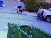 Clip: Kinh hoàng bé trai 3 tuổi bị chó pitbull cắn rách mặt
