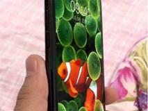 Lộ ảnh iPhone 8 với máy quét vân tay ở mặt trước