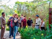 Vinpearl Safari xây quy chuẩn đánh giá phúc lợi động vật