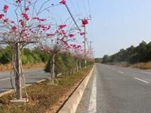 Buôn đất Sài Gòn: 3 ngày tăng thêm 1 tỷ