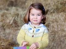 Công chúa nhỏ nước Anh xinh xắn và lớn bổng trong bức ảnh mừng sinh nhật lần thứ 2