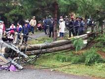 Lốc xoáy quật trụ điện ngã đè 2 mẹ con cô giáo tử vong