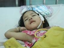 Vụ tai nạn thảm khốc 12 người chết ở Gia Lai: Lời kể ám ảnh của người sống sót