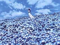 """Bộ ảnh chứng minh Nhật Bản là """"thiên đường"""" cho các thanh niên sống ảo"""