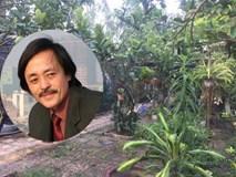 """Chiêm ngưỡng nhà vườn 10.000m2 mà Giang """"còi"""" quyết không bán để mua chung cư nội đô"""