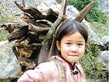 Cuộc đời bi kịch của em bé 12 tuổi nuôi cha dượng tàn tật và 4 anh trai ăn học