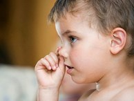 Ăn gỉ mũi tốt cho sức khoẻ